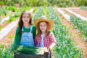 Family business coaching, agricultural coaching and consulting services.